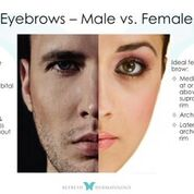 Eyebrows   Dr. Suneel Chilukuri